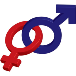 Employment Law – What are the Rights of Transgender Employees?